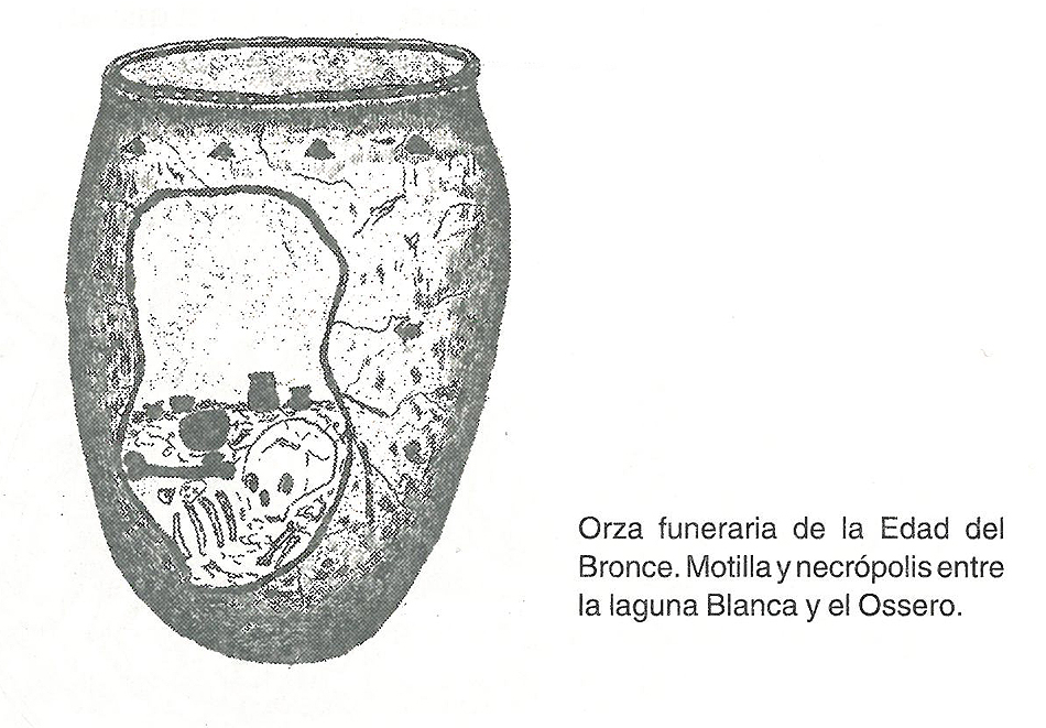 Dibujo de los restos prehistóricos de una orza funeraria